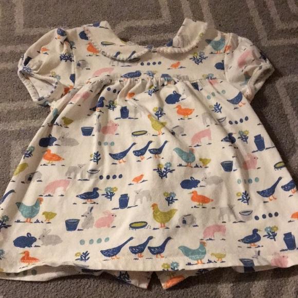 6fe411ee33e0 Mini Boden Shirts & Tops   Baby Boden Farm Top Peter Pan Collar ...